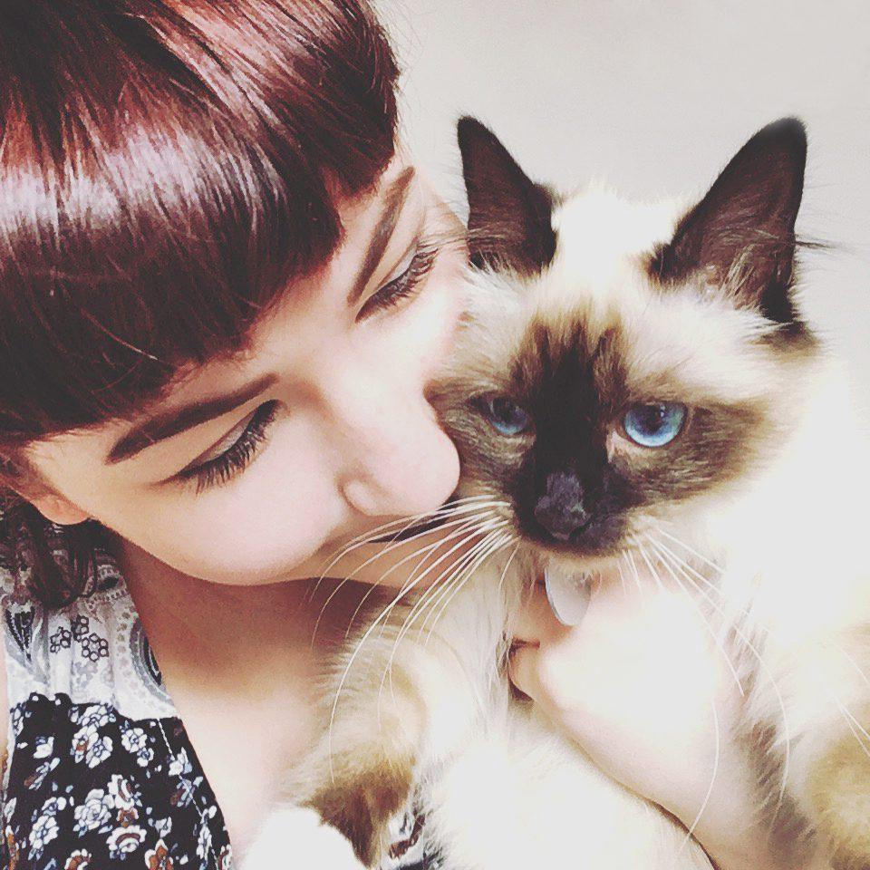 Katzensitter sind tolle Altternativen zu Katzenpensionen!